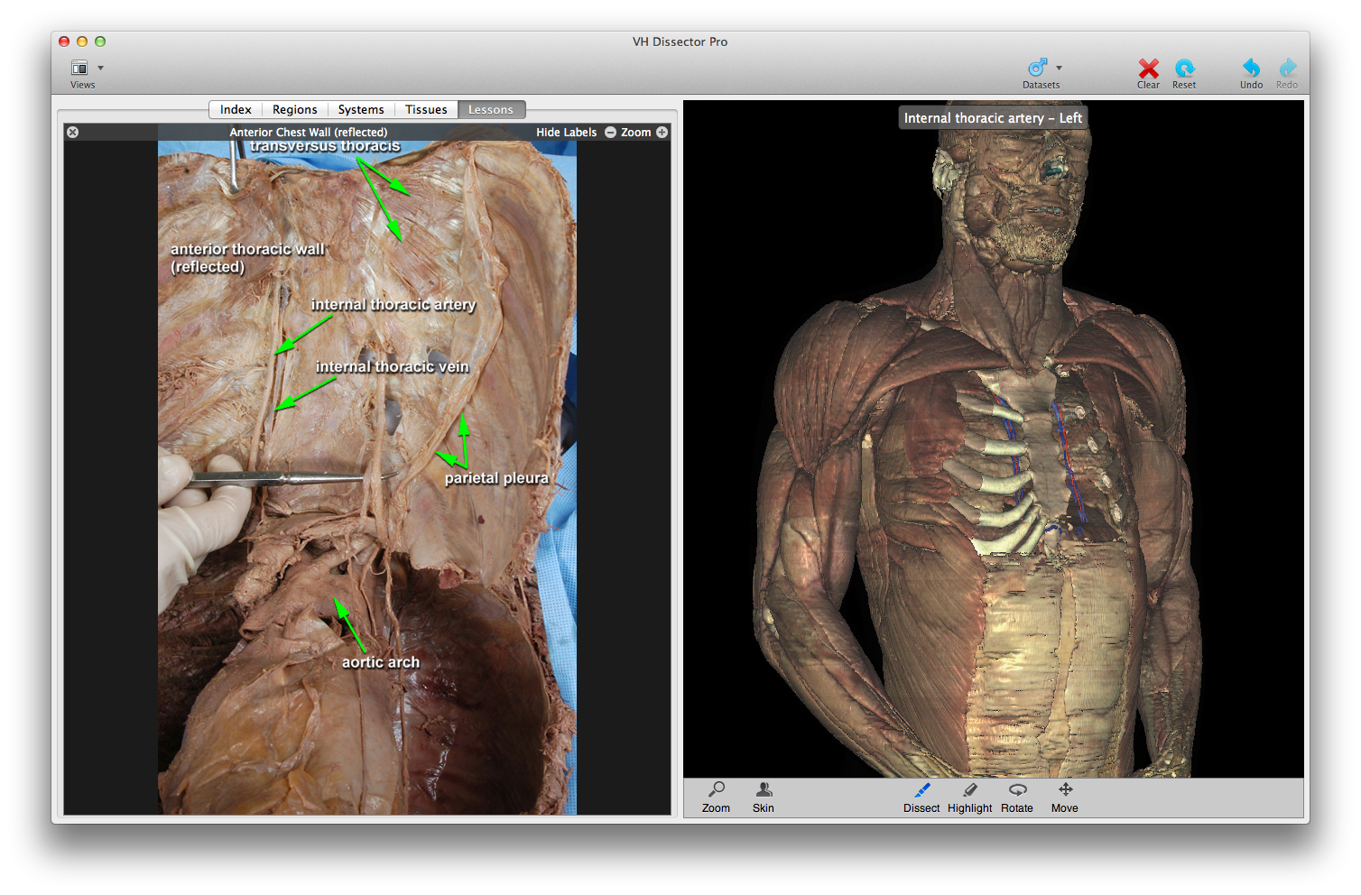 Explore the human anatomy from head to toe and from skin to bones with the Virtual Human Body.